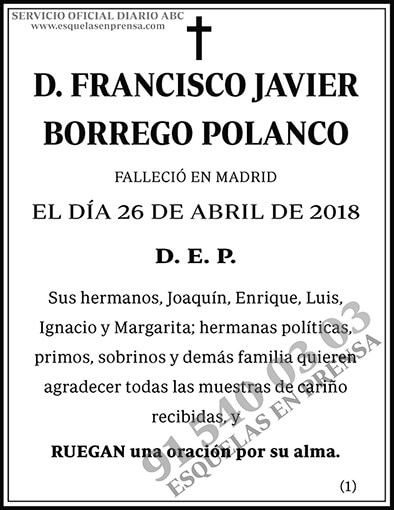 Francisco Javier Borrego Polanco